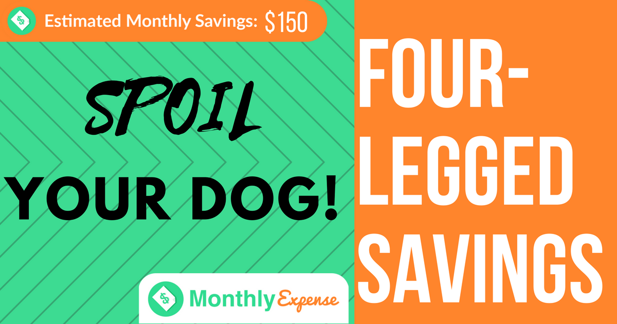 5 Ways to Save Money Even While Spoiling Your Dog